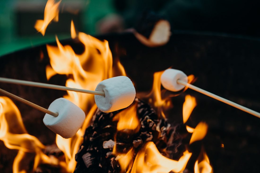 Dishes to cook while camping